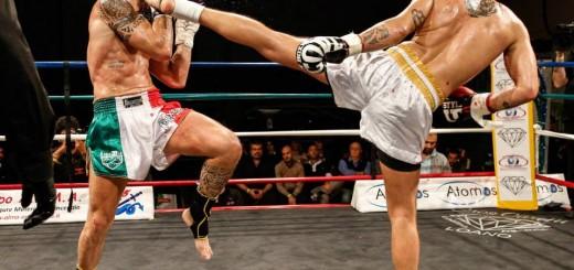 international-fight-show